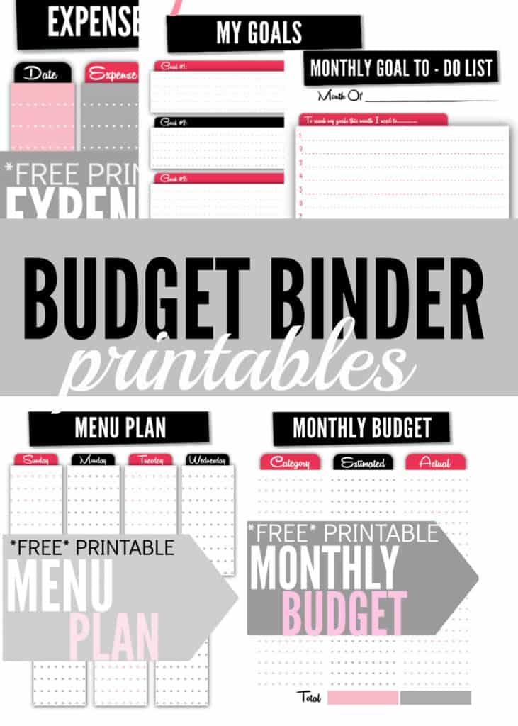 Budget Binder Printable from Single Mom Income