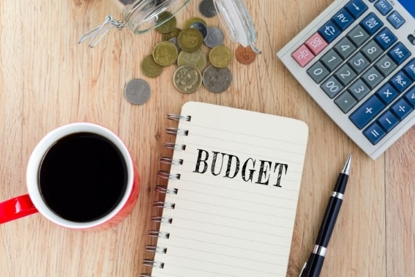 what is the purpose of budget